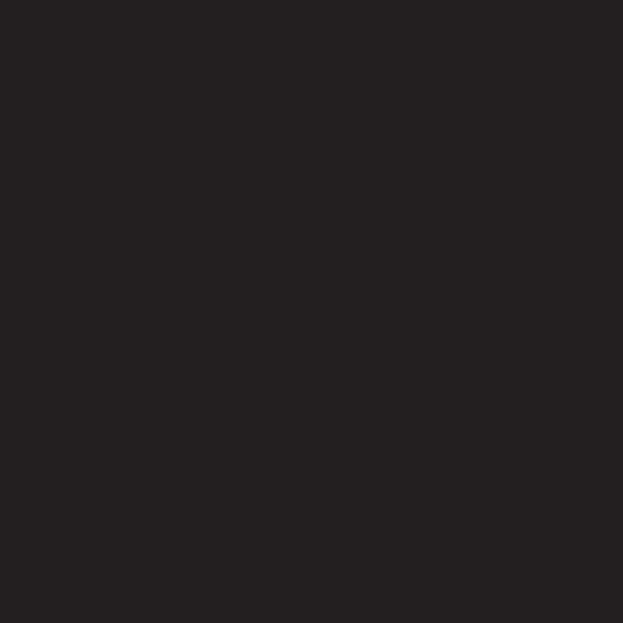 microbrasserie-naufrageur_Logo